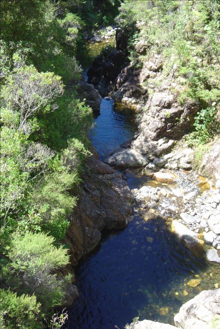 Mountain Stream, Wharekirauponga Track, Parakiwai Valley, Coromandel Peninsula, New Zealand