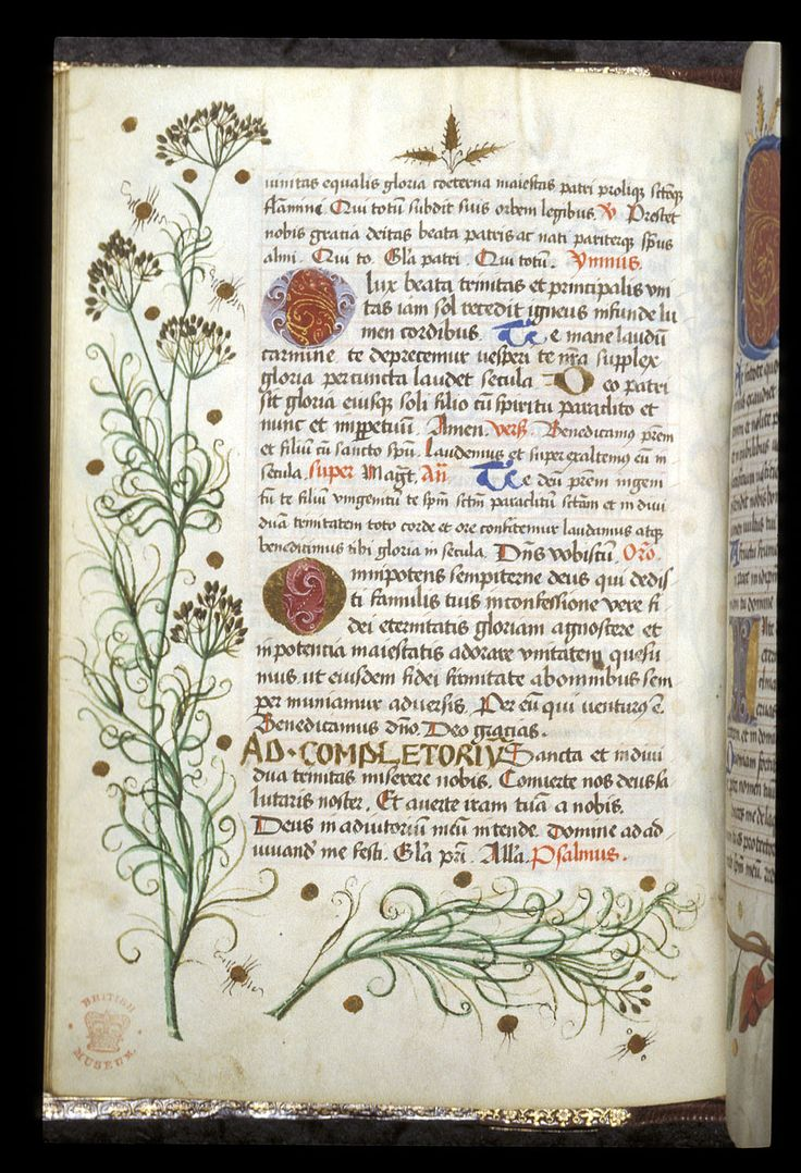 Egerton 1146   f. 111v / Book of Hours, Use of Worms, with elements of a Breviary, Germany, c. 1475 - c. 1485