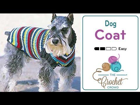 How to Crochet A Dog Coat - YouTube