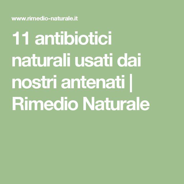 11 antibiotici naturali usati dai nostri antenati   Rimedio Naturale