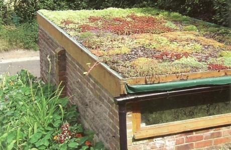 Green Roof How To: Installing Your Own | Permaculture magazine