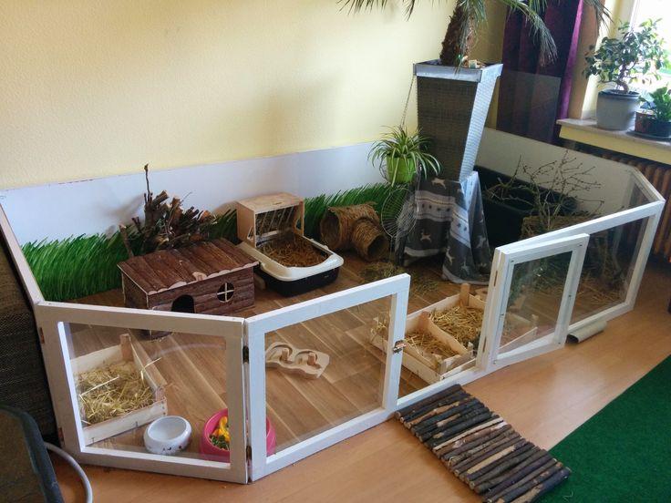 innengehege 4 quadratmeter langohrwelt kaninchen pinterest kaninchen meerschweinchen. Black Bedroom Furniture Sets. Home Design Ideas