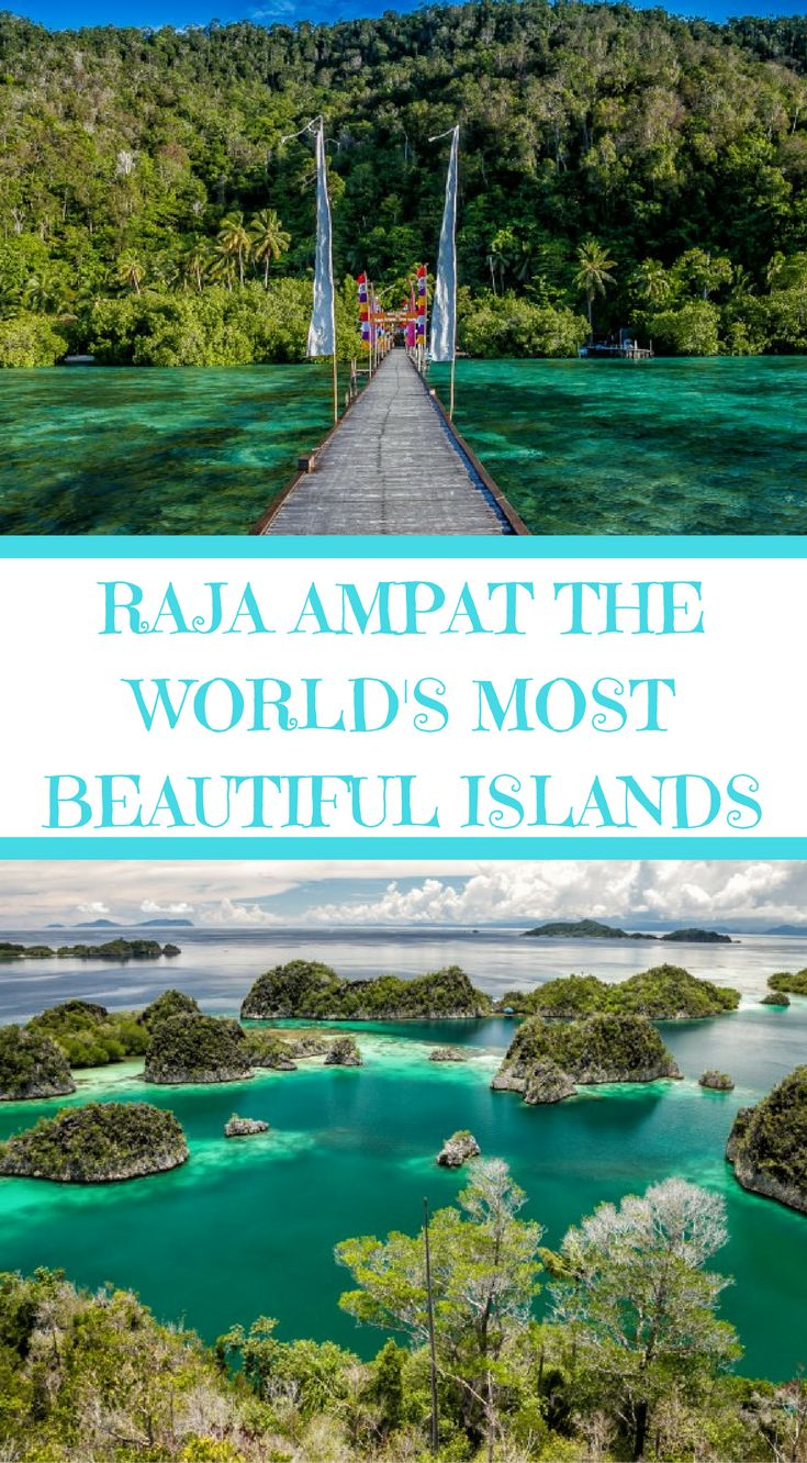 Raja Ampat the world's most beautiful islands. located off the northwest tip of the Bird's Head Peninsula on the island of New Guinea in the West Papua province of Indonesia. The Raja Ampat islands are located smack dab in the center of the Coral Triangle. Click to read more at http://www.divergenttravelers.com/raja-ampat-islands-indonesia/