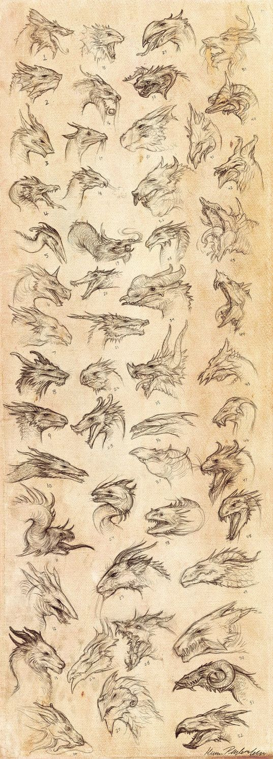 """Dragon Heads by KatePfeilschiefter """"Chock a block a box of dragon heads. Quick pen sketches. Some are based on ideas I wanted to try, others are inspired by other artists"""""""