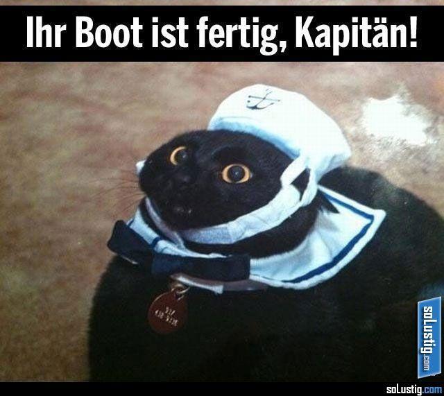 Ihr Boot ist fertig, Kapitän! - #boot #kapitän #katze #kostüm #mütze #verkleidung
