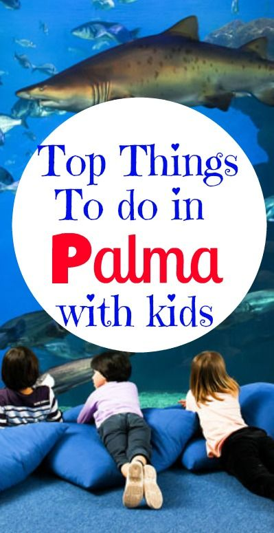 Top Things to do in Palma with Kids