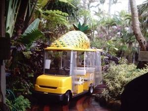 Nago Pineapple Park in Okinawa, Japan.