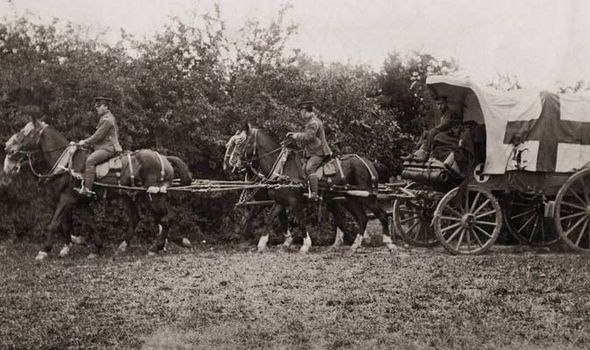 Horses pull a British army ambulance wagon