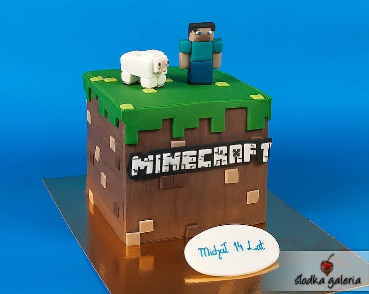 17 Best Images About Minecraft On Pinterest Cake Ideas