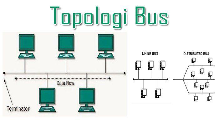 Pengertian Topologi Bus Jenis Ciri Cara Kerja Kelebihan Dan Kekurangan Topologi Bus Lengkap Https Www Pro Co Id Pengertian Top Pendidikan Jenis Sekolah