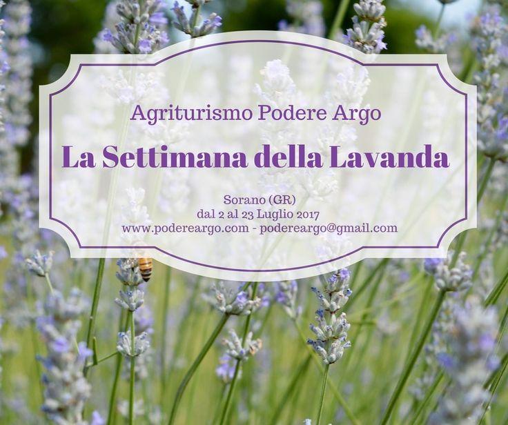 La Settimana della Lavanda, un soggiorno speciale fatto apposta per tutti gli amanti della #lavanda #settimanadellalavanda #soggiorno #agriturismo #maremma #toscana