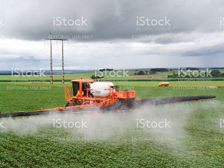spraying soy royalty-free stock photo