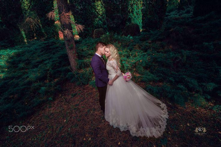 Wedding preview - www.carsdesign.com