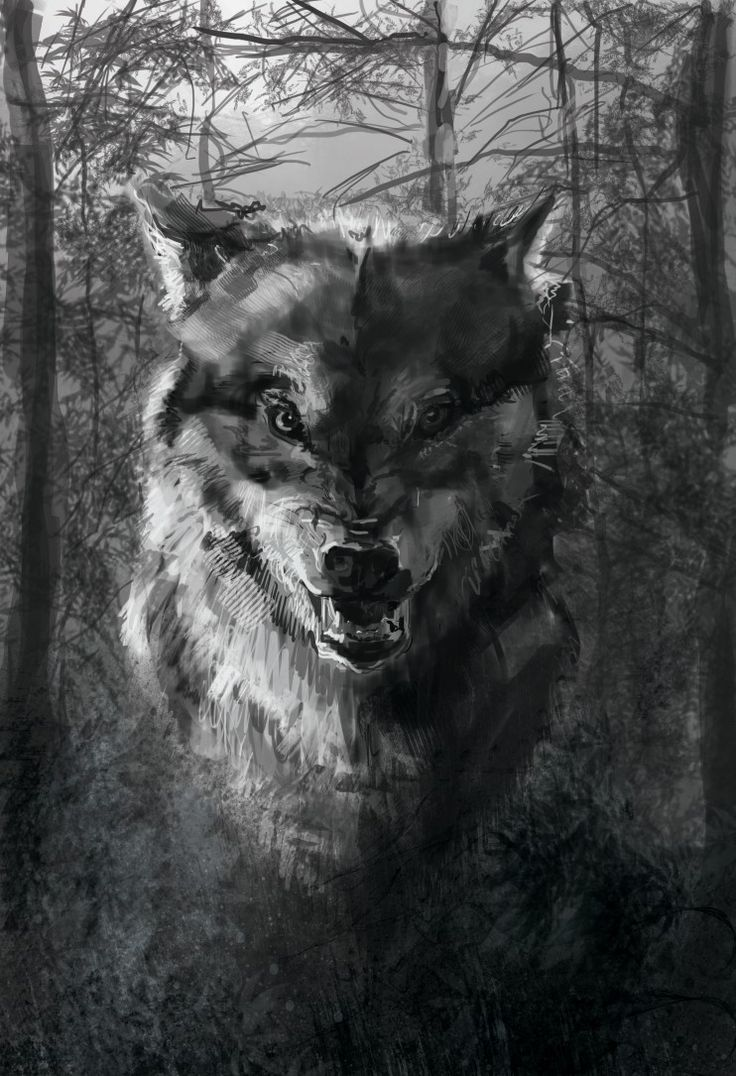 издании злые волки картинки на телефон своему