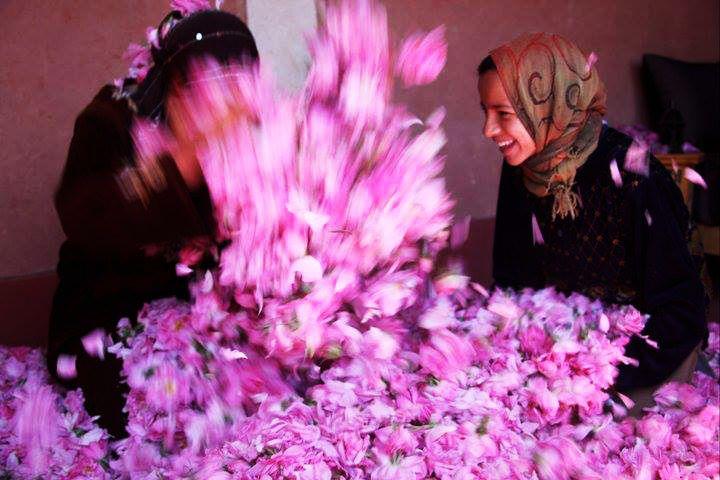 Kasbah des roses au Maroc, gîte d'étape vallée des roses. Après deux ans de restauration financée entièrement par le LABORATOIRE HÉVÉA, la KASBAH DES ROSES a ouvert ses portes en avril 2009. Lahcen et sa famille vous y accueillent chaleureusement pour un séjour authentique en pays berbère, au cœur même de la vallée des roses, à El Kelaa M'Gouna. #Hevea #voyages #Kasbah #roses