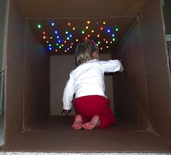 Christmas lights in cardboard maze/ fort. My day just got booked solid.