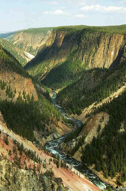 """Looking Down the """"Grand Canyon"""" of the Yellowstone.  *Yellowstone National Park, Wyoming*    Photo by ~Robby Edwards~  September 3 2003 Canyon Junction, Wyoming, US. """