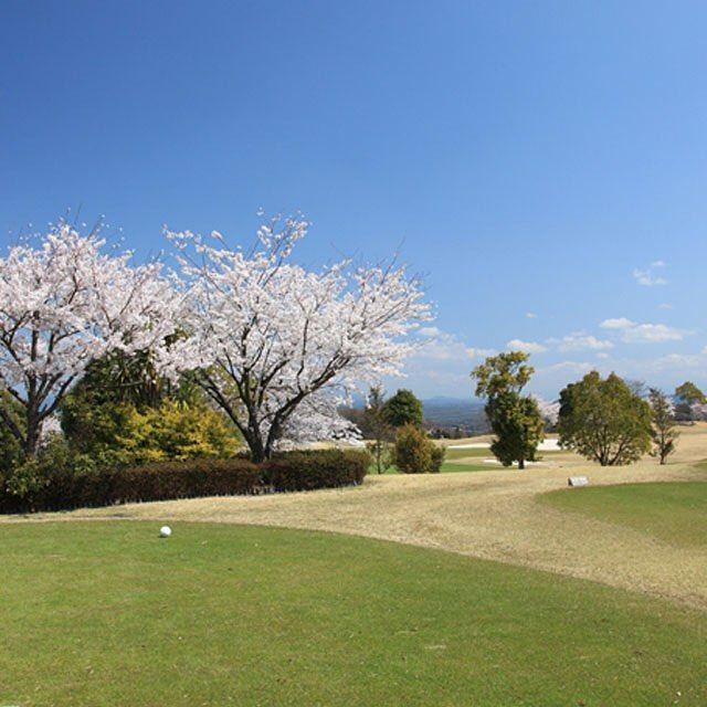 【token.shuga.cc_official】さんのInstagramをピンしています。 《#桜 #花 #ゴルフ場 #岐阜県可児市 #東建塩河カントリー倶楽部》