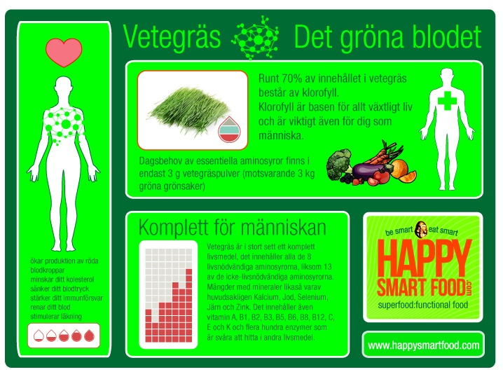 infograph for wheatgrass