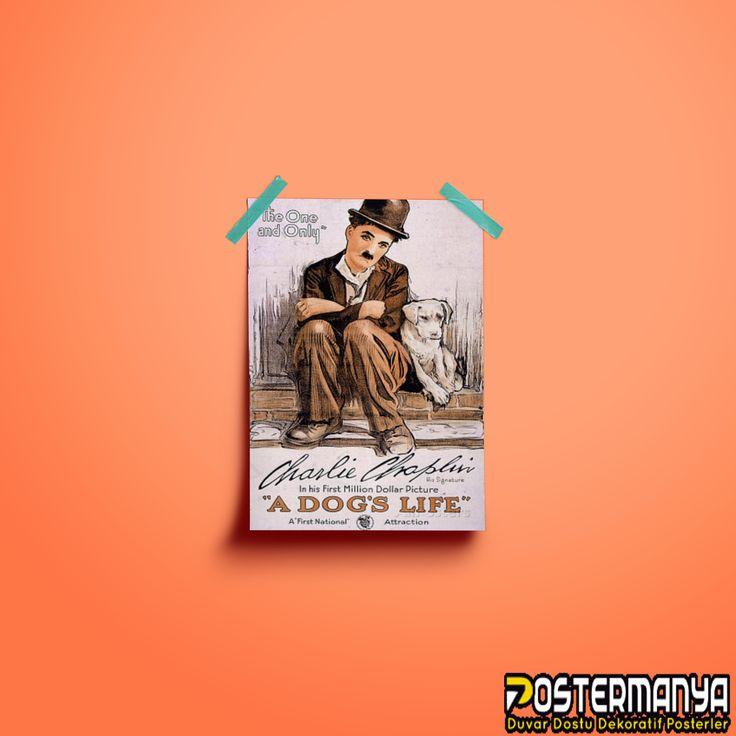 Sessiz filmleri ile meşhur Charli Chaplin hayranları için birbirinden güzel posterler ve kanvas tablolar bizde :)  #evdekorasyonu #dekorasyonfikirleri #dekorasyonönerileri #postermanya #poster #afiş #desing #tablo #duvardekoru #wall #homedesign #sevgiliyehediye #posters #tasarım #dekorasyon #canvas #kanvas #kanvastablo #hediye #sanat #art #dekor #charliechaplin #adogslife