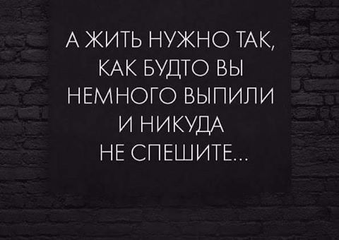 15095666_1013152418789593_1703326333800080764_n.jpg (480×340)