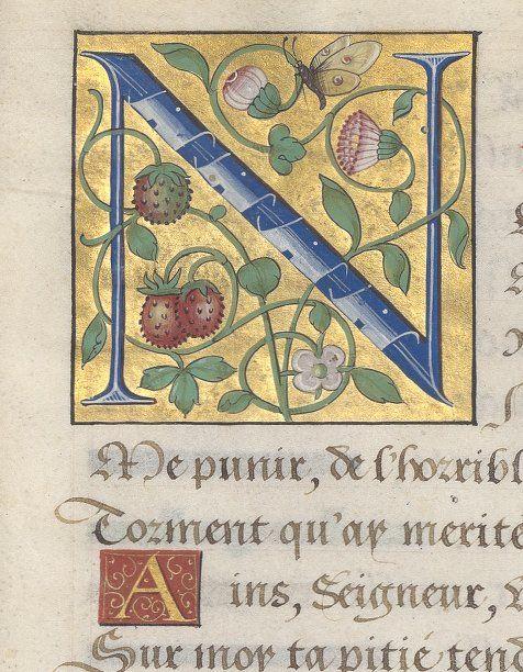 Psautier français de Claude Gouffier, marquis de Boissy, grand écuyer de France, duc de Roannais Auteur : Marot (Clément). Auteur du texte Date d'édition : 1501-1600