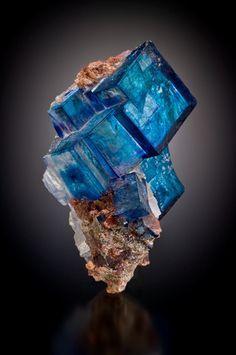 Blue halite with minor sylvite, 8.1 cm