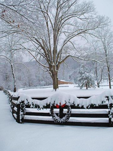 ski+lodge+weddings+in+nc | Snow photos from Asheville North Carolina