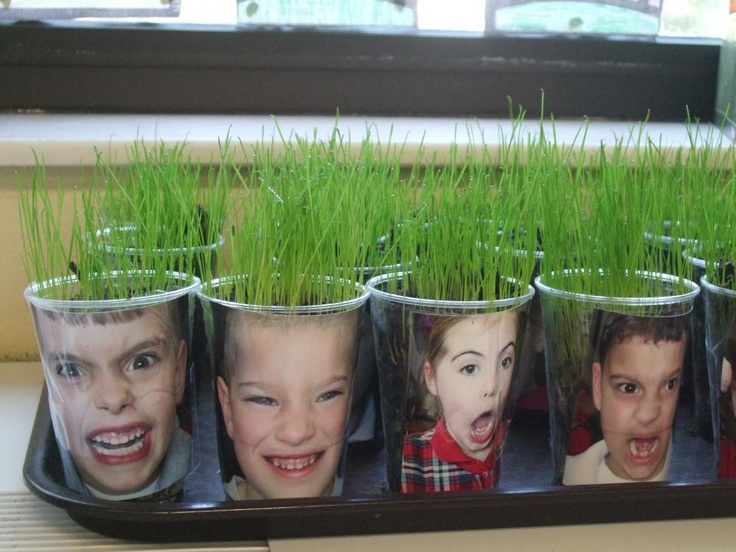 A new twist on Illinois Ag in the Classroom's 'Soil Sam'.