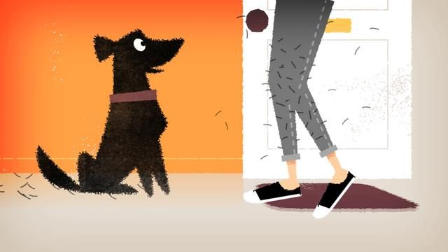 Dyson Dog by Robin Davey. A short animation commissioned by Dyson, for the launch of a new product that deals with pet hair. Produced in Flash and AE over about a month of evenings and weekends.