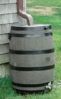 whiskey barrel rain barrel