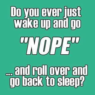 ummm, yeah. until the kids wake me or I need to run to work! lol ;) A night owl can't always be an early bird!