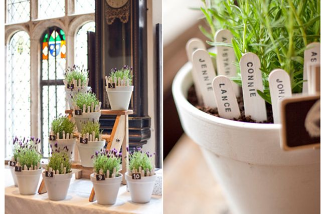 Lavender plants as table plan love it!!