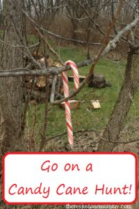 Go on a candy cane hunt -- fun kids Christmas activity