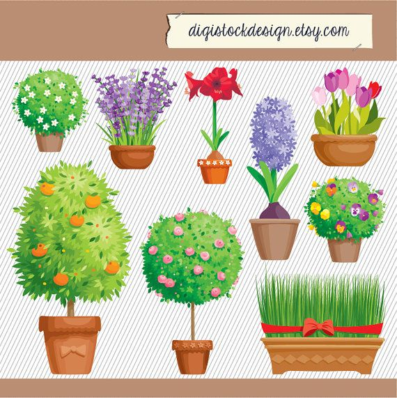 Flower Clipart Garden Illustration Plants Digital Images Clipart018