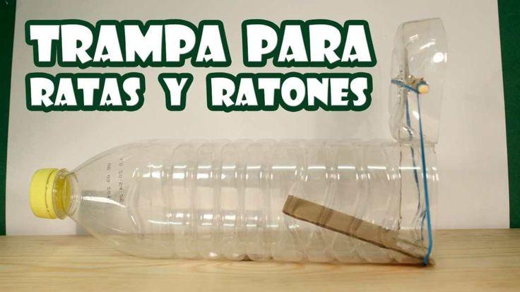 Como hacer una trampa para ratones con una botella de plástico