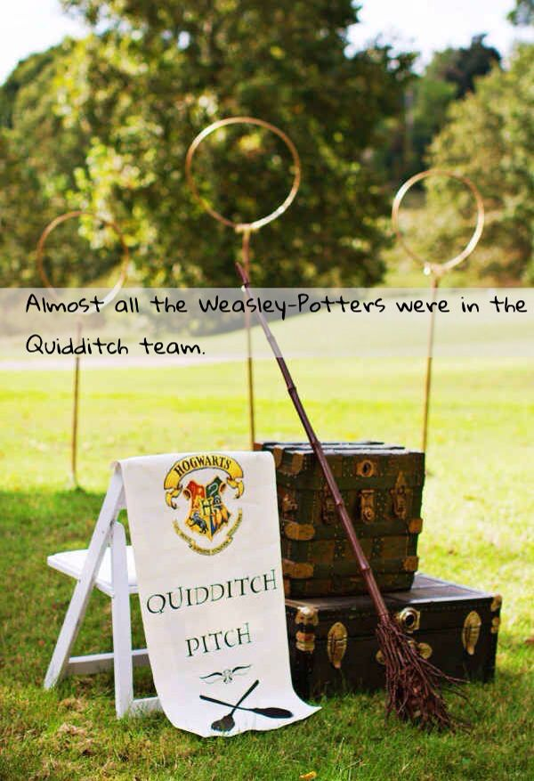 Harry Potter Next Generation Facts and Confessions