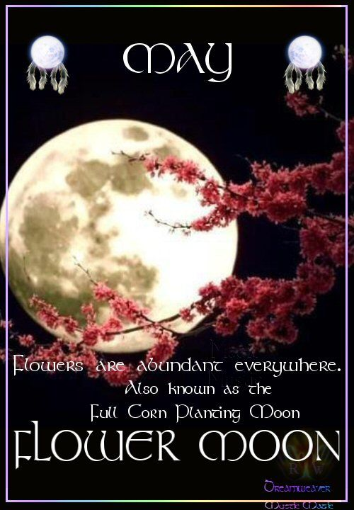 MAY FLOWER MOON Flowers are abundant everywhere. Also known as the Full Corn Planting Moon