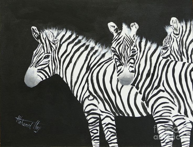 Zebras Painting - Yin And Yang Triptych White On Black by Mohamed Hirji