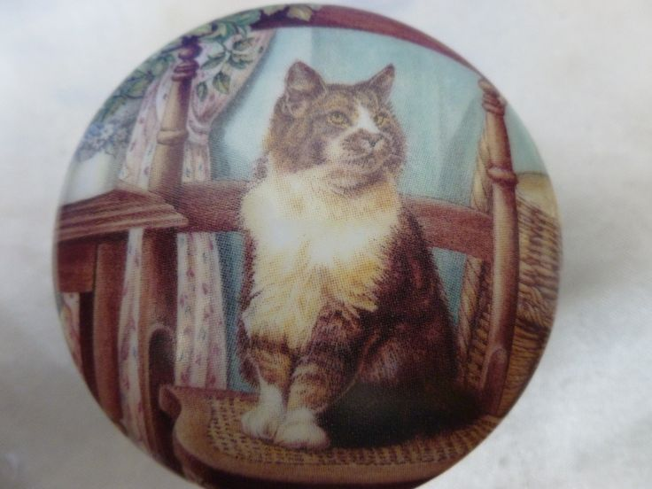 Cat Trinket Box - Tabby Cat China Trinket Box - Tabby & White Cat Pill Box - Tabby Kitten Trinket Box  Vintage China Pill Box - Cat Ring Box by Teddyrose54 on Etsy
