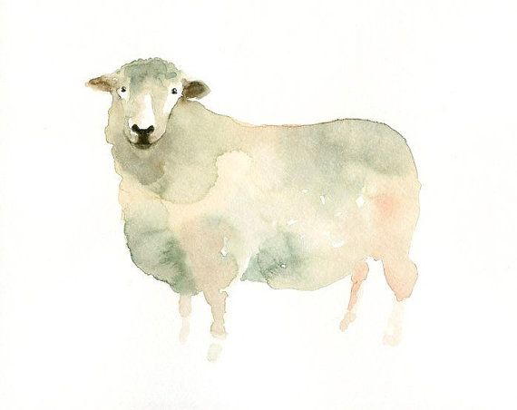 SHEEP  7x5inch PrintArt Printanimal Watercolor by dimdimini