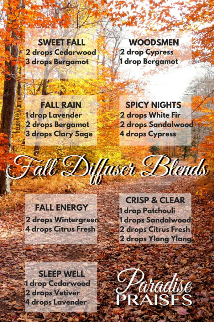 Essential Oil Diffuser Blends for Fall via paradisepraises.com