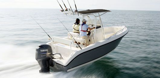 Dream boat: center console saltwater fishing boat - twin four stroke engines - t-top with rod holders - garmin - sundeck, etc! :)