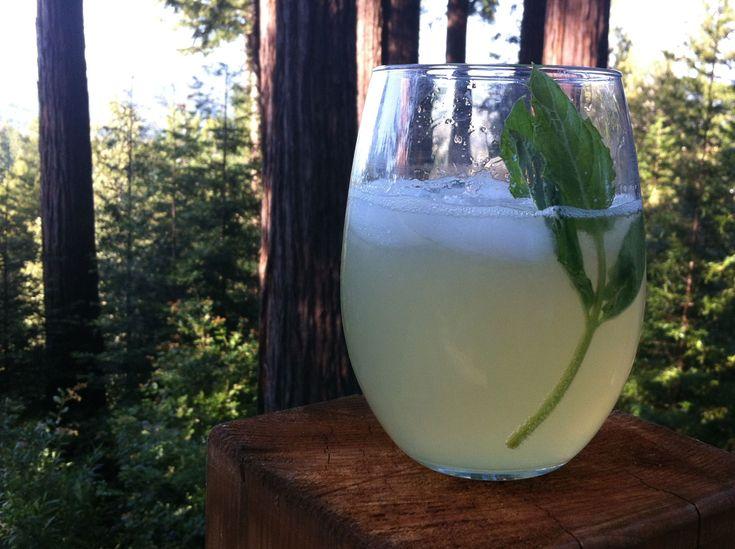 Virgin Cocktail: Sparkling Honey-Lemon Kombucha | Kombucha ...
