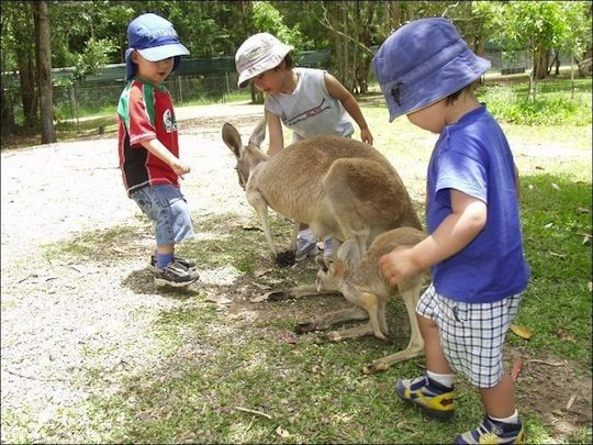 Activities for kids in Brisbane.