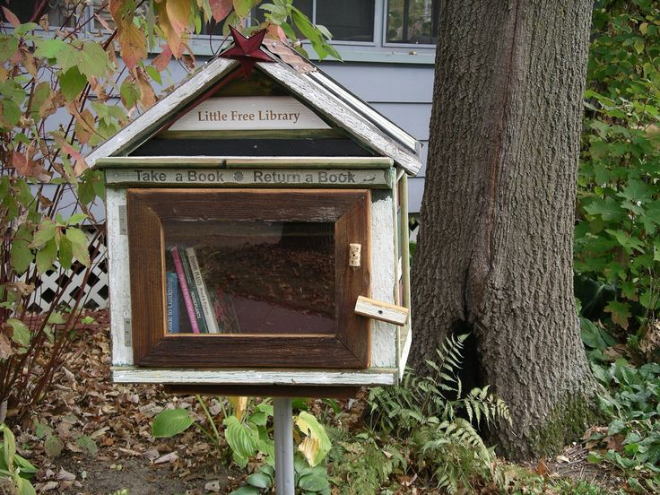 Build a Little Free Library