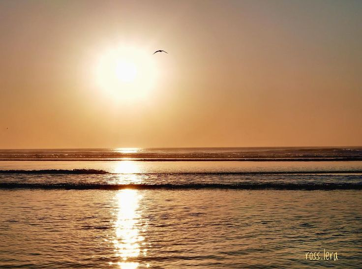 Sobrevolando el atardecer. . . . . #instant_es #thephotoofday #lafotodeldia #landscaper #landscapehunter #landscapeslovers #landscapeshot #paisajes #naturaleza #naturalezapura #mimizanplage #mimizan #playas #vscobeach #InstaDOZamigos #lumixandme #lumixlife #lumixgf7 #lumixphoto #sunnydays #thebestday