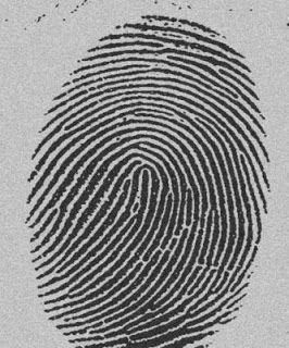 Ersilio Gallimberti: Nell'era digitale, senza impronte digitali.