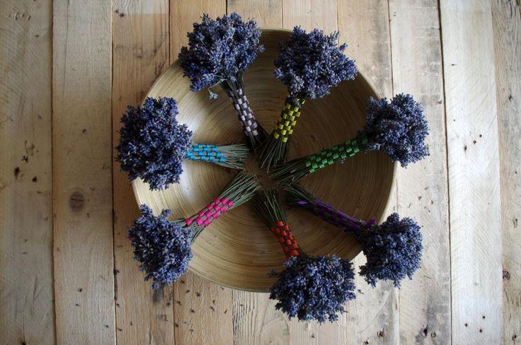 Levandulové svazečky - Malý svazeček levandule očištěné od lístků jsme propletly barevnými stužkami. Proplétání je jednoduché, můžete však experimentovat i se složitějšími vzory. ( DIY, Hobby, Crafts, Homemade, Handmade, Creative, Ideas)