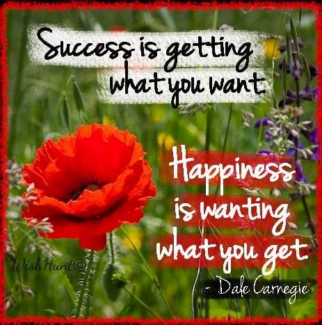 Happiness and success quotes via www.Facebook.com/WishHunt and www.WishHunt.com